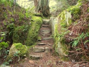 stairway-to-wilderness-hiking-1400435-1280x960