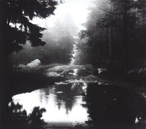 mystic-water-1410939